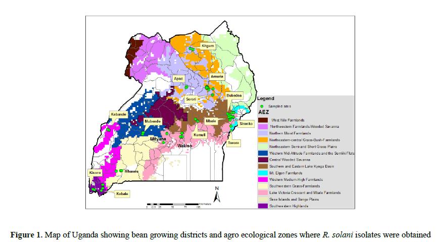 analysis-molecular-ecological-zones