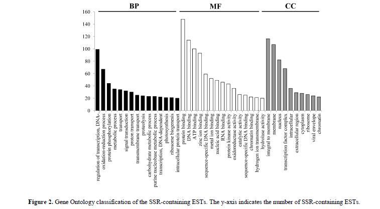 geneticsmr-Large-scale-development-characterization-classification